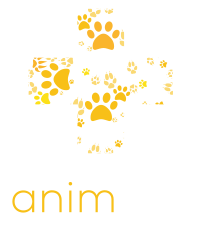 logo_animath_footer